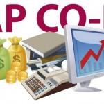 Cuentas de resultados en SAP: Módulo SAP Co-Pa
