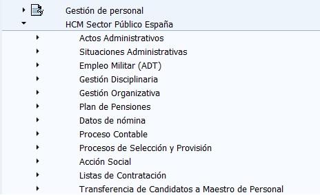 SAP HCM Sector Público España (addon) - Consultoria-SAP.com