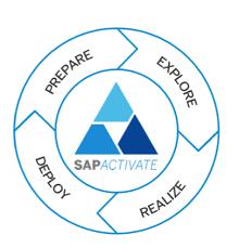 Gestión de proyectos desde Solution Manager 7 - SAP Active.png