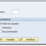 Tutorial SAP HCM: Características en SAP HR (1/2)