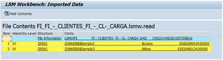 SAP LSMW: Comprobar datos cargados de fichero