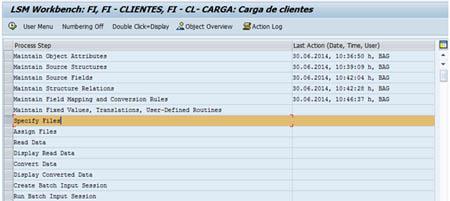 SAP LSMW: Especificación del fichero a cargar