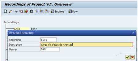 Configurar LSMW: Crear nuevo registro