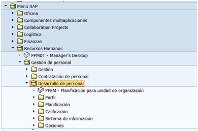 SAP HCM - Gestión del Desarrollo de Personal