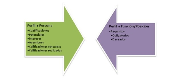 SAP HCM: Gestión del talento en el módulo de Desarrollo de Personal