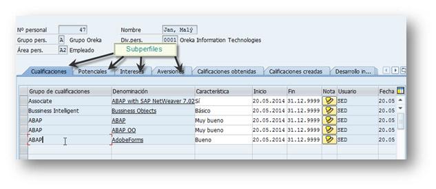 SAP HCM: Perfiles y subperfiles en el infotipo 0045