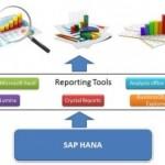 SAP HANA vs SAP BW: ¿Qué elegir? (1 / 2)