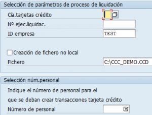 SAP HCM, ventana de selección de parámetros