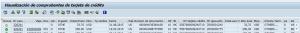 SAP HCM, visualización de comprobantes