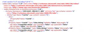 SAP Netweaver Gateway Client