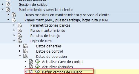 Campos de usuario SAP, hojas de ruta definir