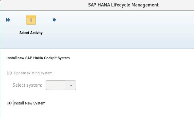 Actividad en SAP Lifecycle management