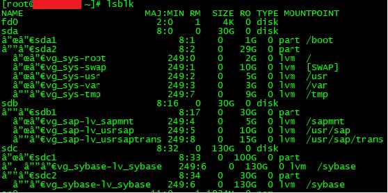 SAP, resultados del comando lsblk