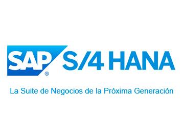 SAP ASSET MANAGEMENT - Problemas que soluciona