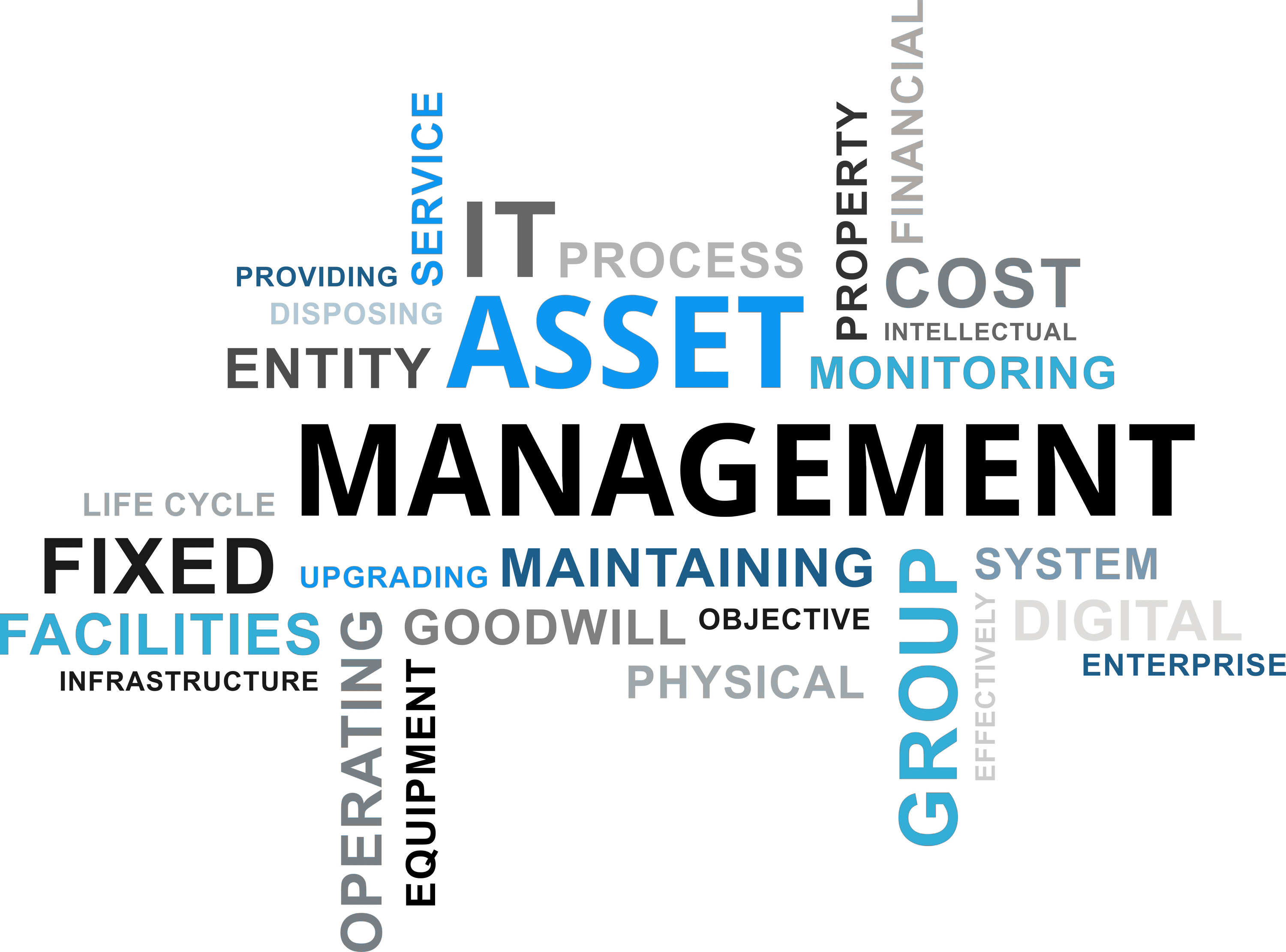 SAP S:4 HANA ASSET MANAGEMENT