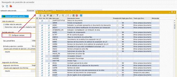 Partidas individuales SAP HANA -Configuración de campos ACDOCA