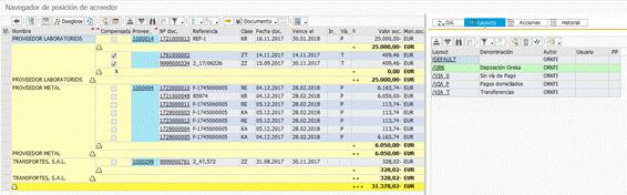 Partidas individuales en SAP HANA - ALV y control de visualización del informe
