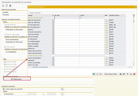 Partidas individuales en SAP HANA - Campos parametrizados