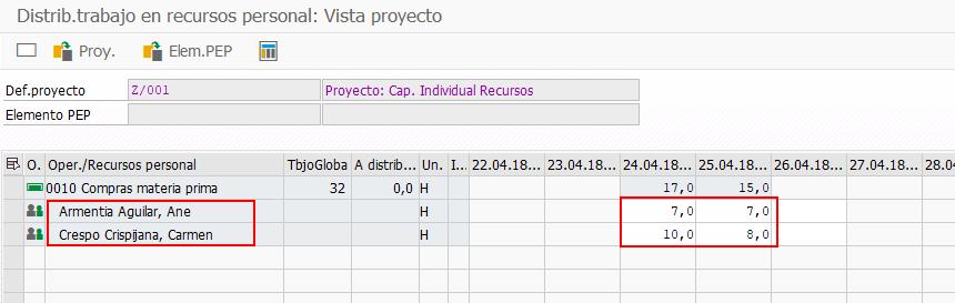 SAP PS Capacidad Individual - Vista Planificación individual
