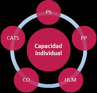 SAP PS Capacidad Individual - módulos