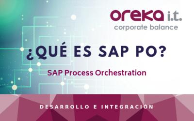 ¿Qué es SAP PO?