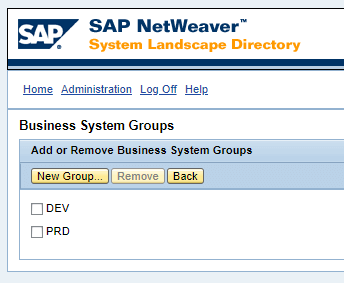 Configuración de transportes SAP PO - Business System Group