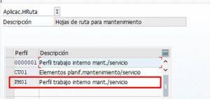 Hojas de ruta en SAP PM - Perfil