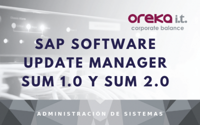 SAP Software Update Manager SUM 1.0 y SUM 2.0