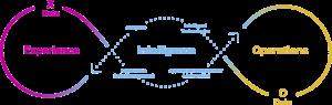 ubicación de analytics por SAP