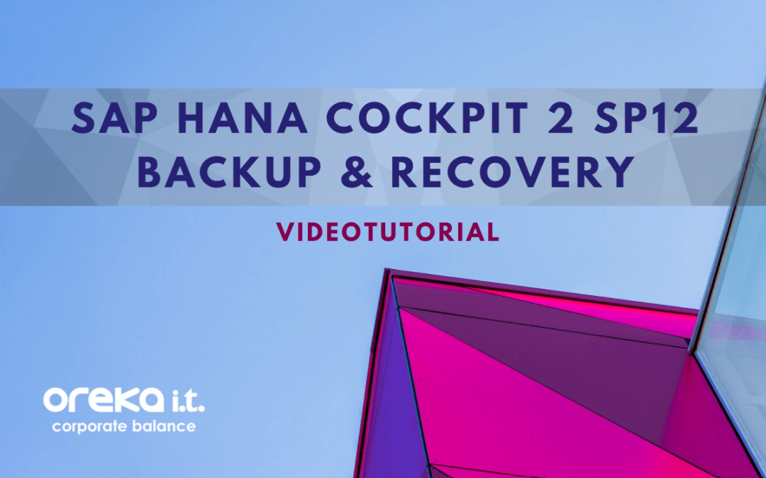 Videotutorial: SAP HANA-Cockpit Backup & Recovery