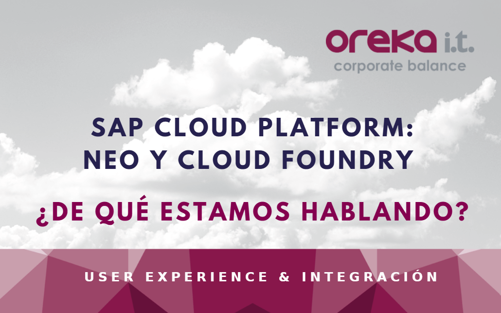 sap cloud platform neo foundry (1)