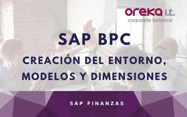 Creación del Entorno, Modelos y Dimensiones en SAP BPC