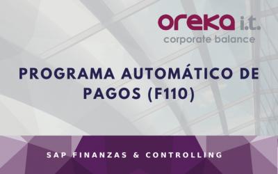 Programa automático de pagos (F110)